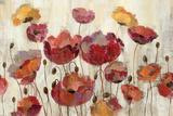 Poppies in the Rain Premium Giclée-tryk af Silvia Vassileva
