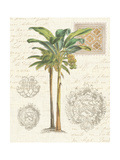 Vintage Palm Study I Premium Giclée-tryk af Hugo Wild