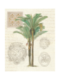 Vintage Palm Study II Premium Giclée-tryk af Hugo Wild