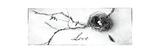 Nest and Branch II Love Premium Giclee Print by Debra Van Swearingen
