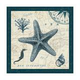 Ocean Life V Premium Giclee Print by  Pela
