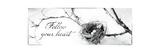 Nest and Branch III Follow Your Heart Giclée-Premiumdruck von Debra Van Swearingen