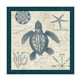Ocean Life VI Premium Giclee Print by  Pela