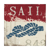 Nautical III Red Premium Giclee Print by Jim Wellington