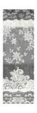 Vintage Lace Panel II Premium Giclee Print by Hugo Wild