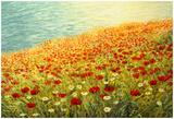 Poppies On The Seashore Prints by  kirilstanchev