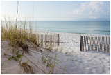 forestpath - Beautiful Beach At Sunrise - Poster