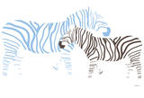 Blue Zebra Prints by  Avalisa