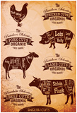 Diagram Of Cut Carcasses Chicken, Pig, Cow, Lamb Posters