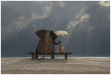 Elephant And Dog Sit Under The Rain Prints by  Mike_Kiev
