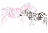 Pink Zebra Poster by  Avalisa