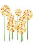 Orange Alliums Plakater av  Avalisa