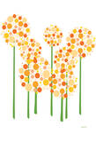 Orange Alliums Poster di Avalisa,