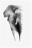 Artistic Black And White Elephant Print van  Donvanstaden