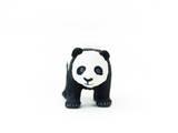 Baby Panda Photographic Print by Romina Bacci