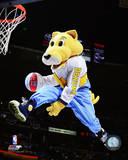 Rocky, the Denver Nuggets Mascot Photo