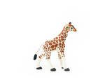 Giraffe Photographic Print by Romina Bacci