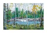 Oxtounge Rapids Giclee Print by Graham Forsythe