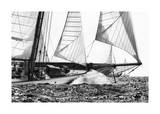 Free Sailing Giclee Print by Jorge Llovet
