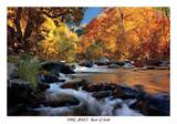 River of Gold Prints by Mike Jones