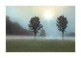 Two Trees & Sunburst Giclee Print by Monte Nagler