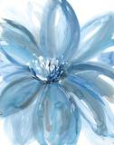 Water Petals Prints by Rebecca Meyers