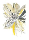 A Sunny Bloom Stampe di Rebecca Meyers