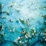 Apple Blossoms Poster by Robert Striffolino