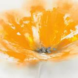 Wild Orange Sherbet II Posters av J.P. Prior