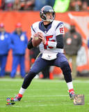 Ryan Mallett 2014 Action Photo