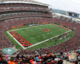 Paul Brown Stadium 2014 Photo