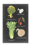 Blackboard Veggies II Prints by  Vision Studio