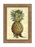 Pineapple Splendor II Print by  Vision Studio