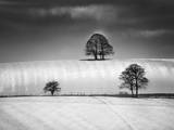 Winter Triangle Photographic Print by Martin Henson
