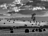 Rolls of Hay Photographic Print by Martin Henson