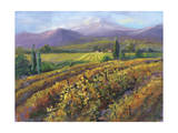 Vineyard Tapestry I Prints by Nanette Oleson