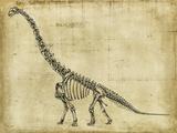 Brachiosaurus Study Giclee-tryk i høj kvalitet af Ethan Harper