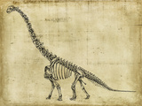 Brachiosaurus Study Reprodukcje autor Ethan Harper