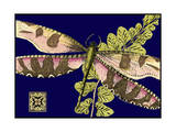 Mini Shimmering Dragonfly IV Print by  Vision Studio