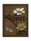 Gilded Blossom IV Prints by  Vision Studio