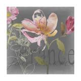 Joie de Vivre II Premium Giclee Print by Kiana Mosley