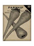 Vintage Seed Pack IV Poster by  Vision Studio