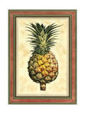 Pineapple Splendor I Prints by  Vision Studio