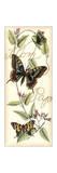 El vuelo de la mariposa I Lámina por  Vision Studio