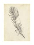 Feather Sketch I Affiches par Ethan Harper