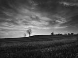 Black and White Sunset Photographic Print by Martin Henson
