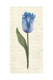 Twin Tulips III Print by Grace Popp