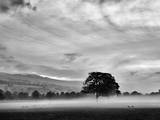 Misty Weather IV Photographic Print by Martin Henson
