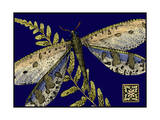 Mini Shimmering Dragonfly III Poster by  Vision Studio