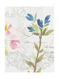 Romantic Watercolor III Premium Giclee Print by Kiana Mosley